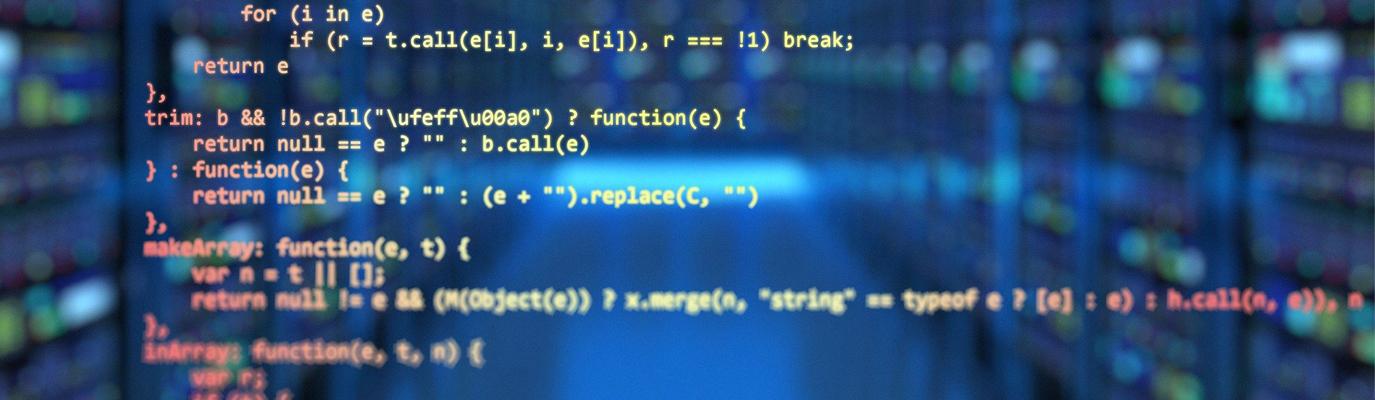 Digitalisierung und Informatikstrategie: Am Ende entscheidet Software